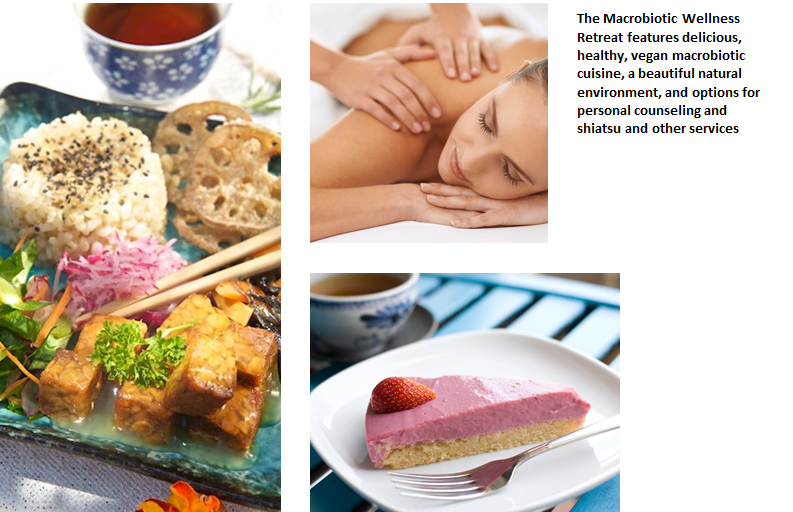 the macrobiotic diet essay